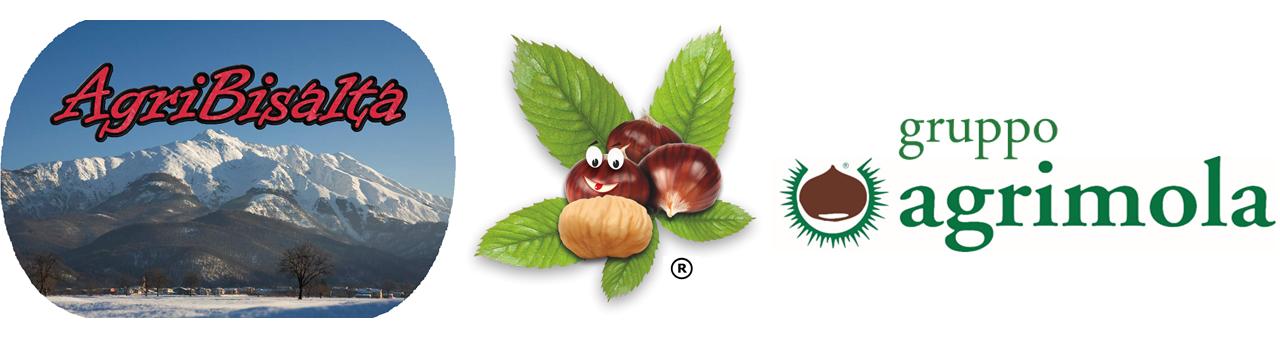 www.agribisalta.it - Lavorazione e commercio di prodotti ortofrutticoli locali